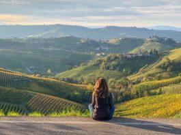 Conoscere il vino, l'Italia è ricca di territori da scoprire