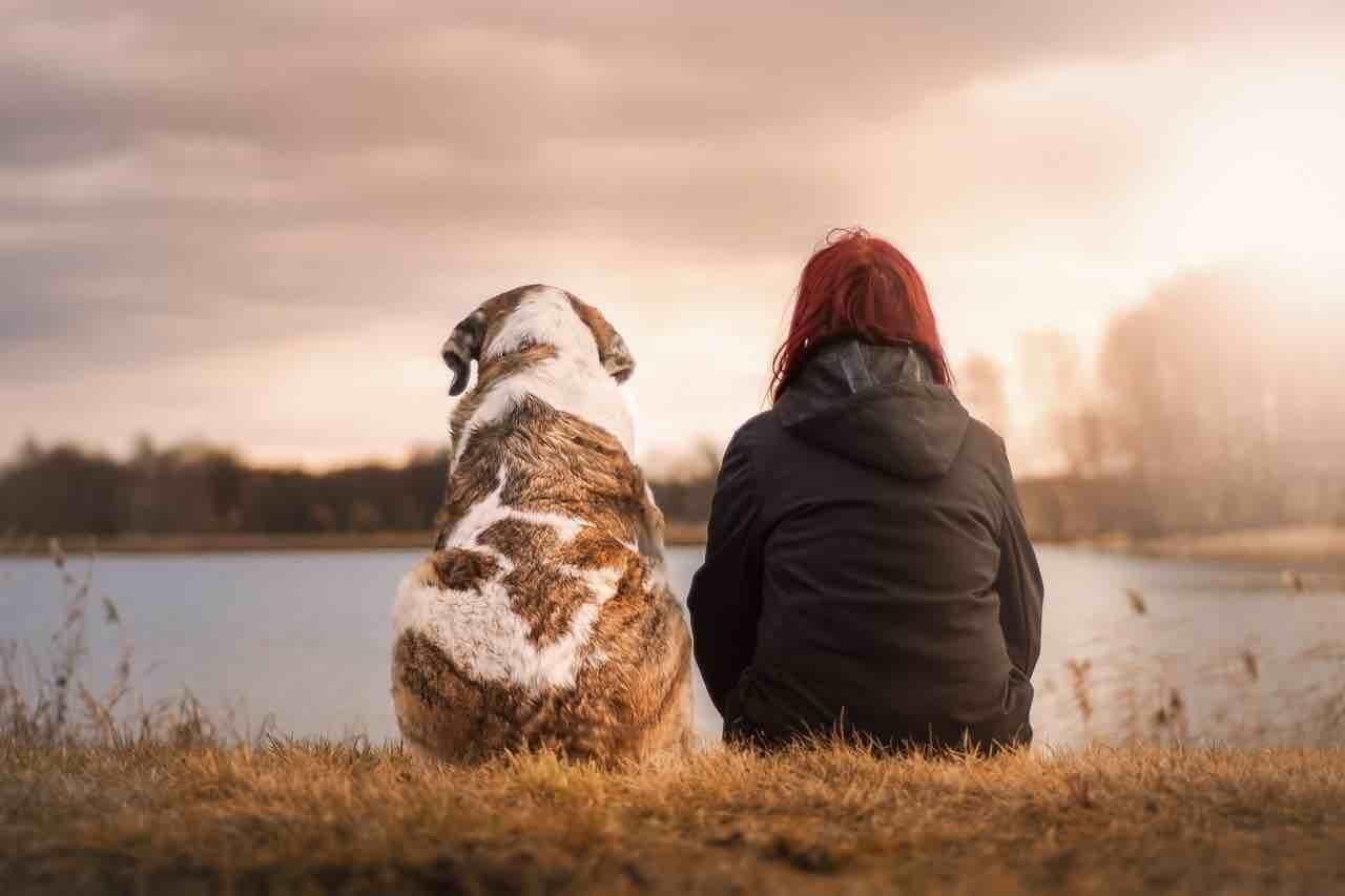 Cane e donna vicino al lago